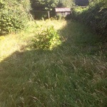 Garden Clearance - FACE Faversham